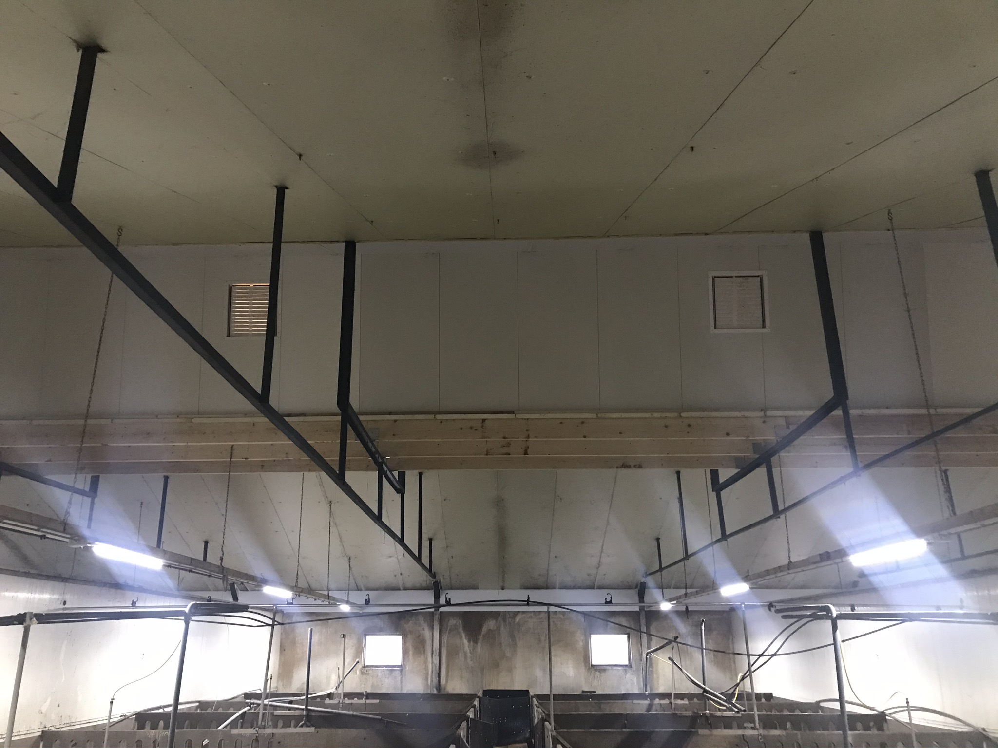Renovatie vleesvarkensstal